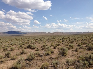 Photo of sagebrush steppe