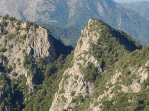 Photo of Ventana Wilderness